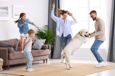Full body of happy playful family: parents and little kids with cute purebred Labrador retriever dog having fun and dancing together in living room at home Banque d'images