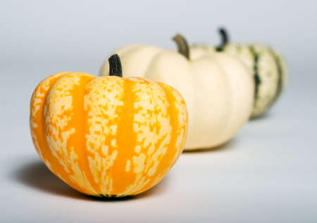 Three small pumpkins in a row with two out of focus photo