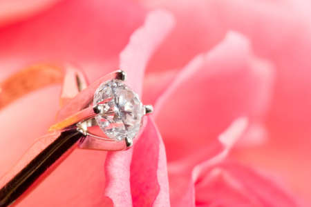 Romantic way to present a engagement ring with diamond inside beatiful rose on Valentine day. photo