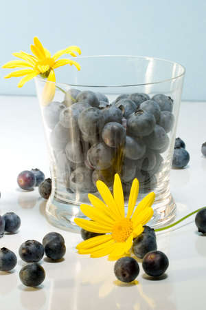 aqua flowers: Blueberries inside clear glass on reflective surface and yellow flowers over aqua paper background Stock Photo