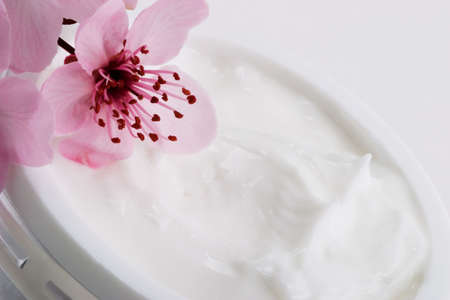 Extreme closeup of open container of moisturizing face cream and blooming twig of plum Stock Photo - 803603