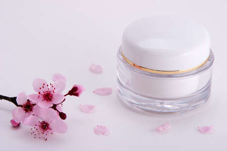 Closeup of container of moisturizing face cream and blooming twig of plum on white background with small pink petals around Stock Photo - 848775