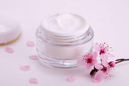 Closeup of open container of moisturizing face cream and blooming twig of plum on white background with small pink petals around Stock Photo - 848774