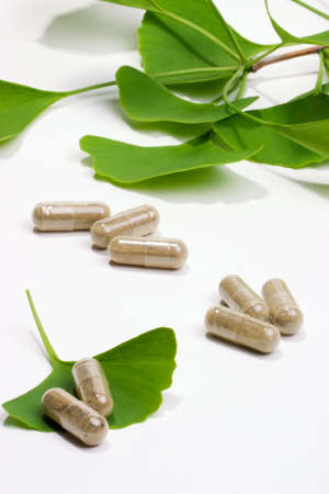 extract: Ginkgo Biloba extract pills and fresh Ginkgo Biloba leaves best suited for aged people alternative medicine ads Stock Photo