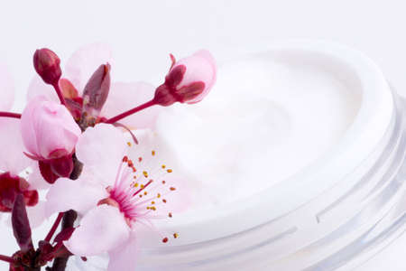 moisten: Extreme closeup of open container of moisturizing face cream and blooming twig of plum Stock Photo