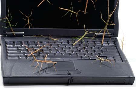 Stok fouten via het toetsen bord en scherm vallende laptop geschikt zijn voor elke computer bescherming thema Stockfoto