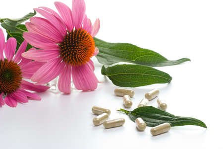 Closeup of Echinacea extract pills and fresh Echinacea flowers and leaves best suited for alternative medicine ads