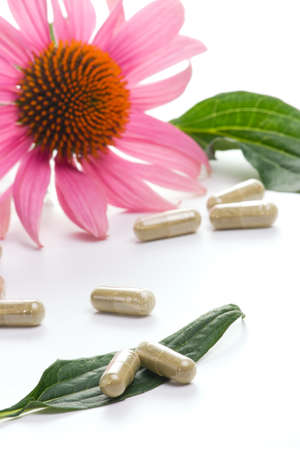 echinacea: Closeup of Echinacea extract pills and fresh Echinacea flowers and leaves best suited for alternative medicine ads. Flower out of focus. Stock Photo