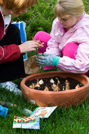 family time: Family time outside in the garden by planting spring bulbs into container during autumn