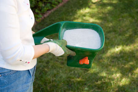 Woman takes care about her lawn fertilizing with handeld crank spreader in front yard