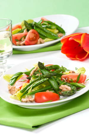 Two plates of asparagus, snow pea and tomato salad with ginger dressing.  photo