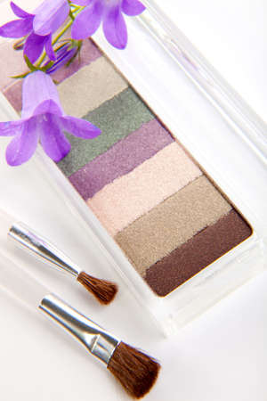 Eyeshadow makeup set closeup with brushes and flowers New Zealand tea tree Stock Photo