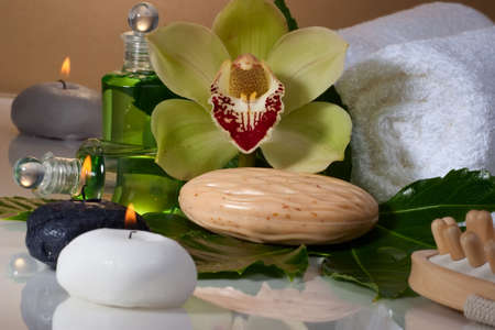 zen candles: Avocado coconut scrub in coconut shell, orchid flower (Cymbidium sp.), tropical plant, soap and aroma candle. Suited for relaxing and health commercials