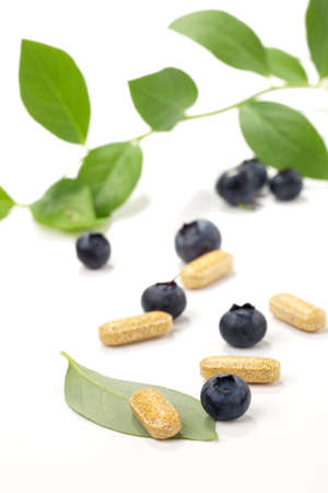 bilberry: Closeup of bilberry extract pills and fresh berries and leaves best suited for alternative medicine ads