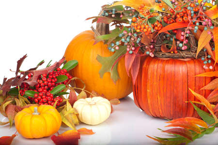 gourds: Closeup of multi colored pumpkins, fall beries and leaves as a decoration for Thanksgiving.