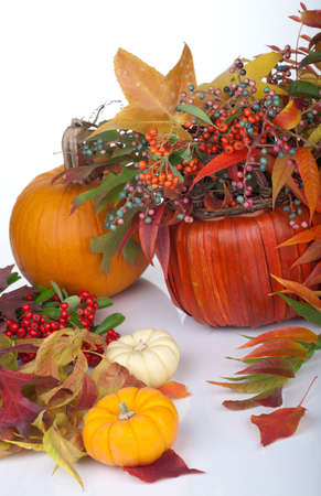 Closeup of multi colored pumpkins, fall beries and leaves as a decoration for Thanksgiving.