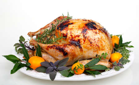 Garnished citrus glazed roasted turkey on tray over white background Stock Photo