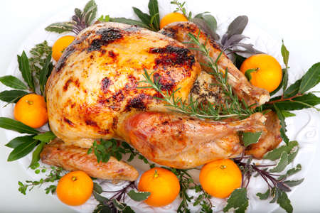 Garnished citrus glazed roasted turkey on tray over white background Zdjęcie Seryjne