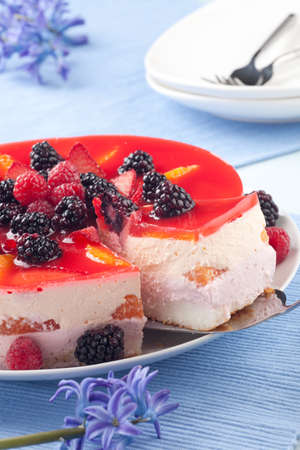 Piece of fruit yogurt cake  Cream and yogurt based fruit filling topped with jelly  Raspberries, blackberries, stawberries, and oranges  photo