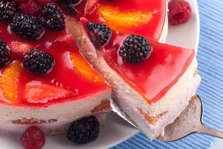 Piece of fruit yogurt cake  Cream and yogurt based fruit filling topped with jelly  Raspberries, blackberries, stawberries, and oranges  Stock Photo