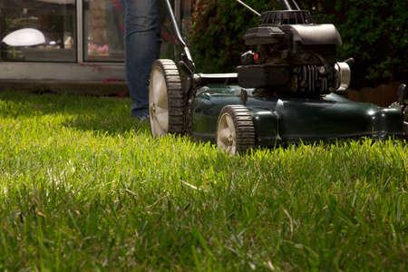 Frau m�ht ihren Rasen mit Rasenm�her in ihrem Hinterhof Lizenzfreie Bilder - 14394926
