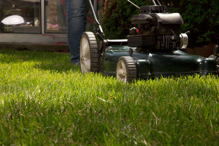 grass cutting: Woman is mowing her lawn with lawn mower in her back yard Stock Photo