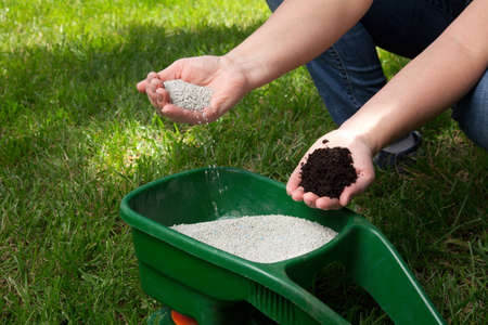 Preparing to fertilize lawn in back yard in spring time Stock Photo