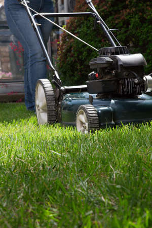 frontyard: Woman is mowing her lawn with lawn mower in her back yard  Stock Photo
