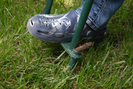 Woman is aerating lawn by manual aerator in back yard Stock Photo