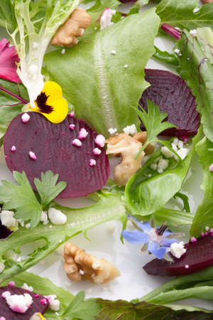 Beets with walnuts, goat cheese, and baby greens organic salad  photo