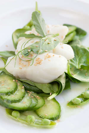 seared: Pan seared cod garnished with sesame seeds and wasabi dressing  Green vegetables - cucumbers, spinach, and sugar snap peas  Stock Photo