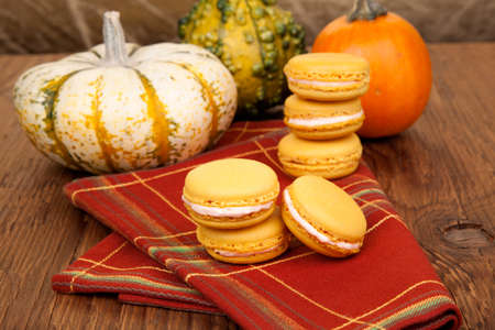 Closeup of a row of french pumpkin macaroons and assorted pumpkins around.