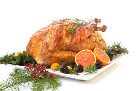 roasted turkey: Roasted stuffed turkey garnished with fresh fruits and herbs for holiday dinner.