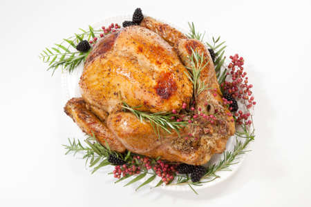 Thanksgiving pepper roasted turkey garnished with blackberry and pink peppercorn on white. Reklamní fotografie
