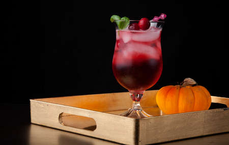 Closeup of Whiskey-Cranberry cocktail on a tray with mini pumpkins. Fall Drinks series. Reklamní fotografie