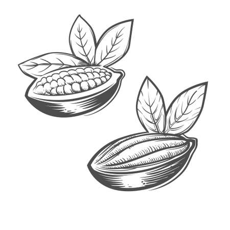 husk: cacao beans monochrome simple illustration