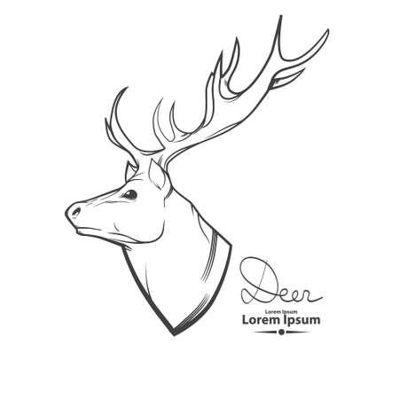 animal head: deer head, simple illustration