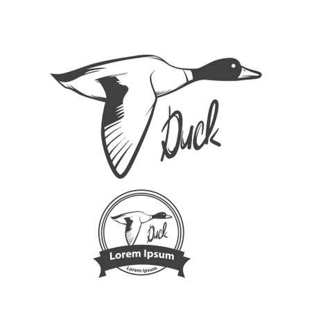 animal farm duck: flying duck Illustration