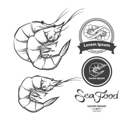 camaron: camarones, mariscos, ilustración, para el menú, aislado en un fondo blanco, elementos de diseño Vectores