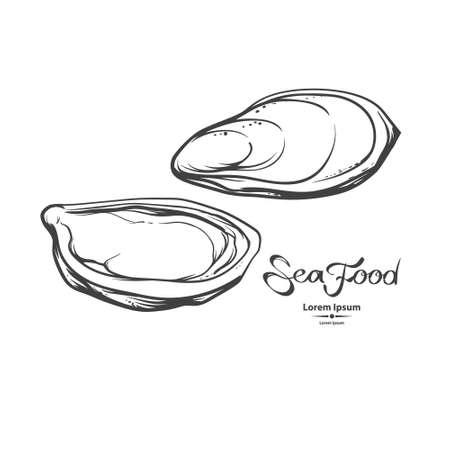 牡蠣、海の食べ物、イラスト、メニューの白い背景で隔離の