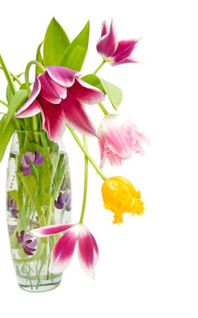 bouquet of tulips of different colors in the vase Stock Photo - 9188671