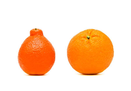 ripe oranges and mandarins closeup on white background