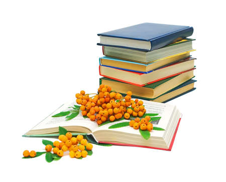 open book, a stack of books and a bunch of rowan berries on a white background
