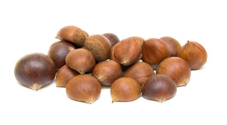 castanea sativa: Ripe Chestnuts (Castanea sativa) on white background close-up Stock Photo