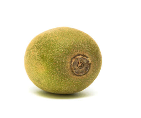 ripe kiwi fruit on white background close-up Stock Photo