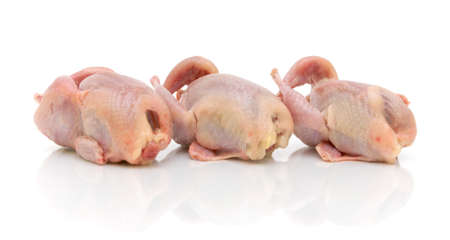 carcass: Fresh quail carcass on a white background close-up Stock Photo