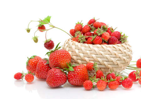 Wild strawberries in a wicker basket and strawberries closeup on white background