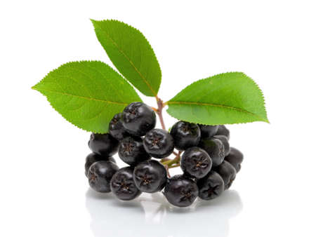 Bunch of ripe black chokeberry on a white background close-up Stock Photo