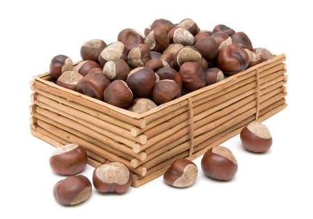mature chestnuts in a wooden box isolated on white background photo