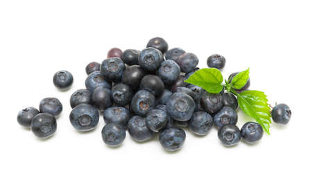 juicy blueberries on a white background  horizontal photo  Top view Stock Photo - 18513173